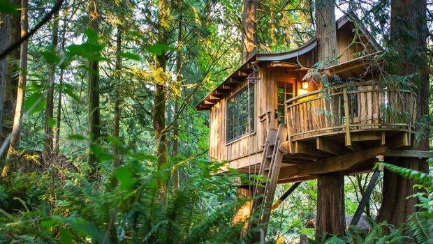 Instagram Worthy Tree House Hotels Should