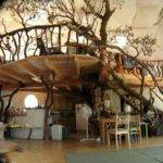 Interior Hobbit Homes Boys Room Pinterest