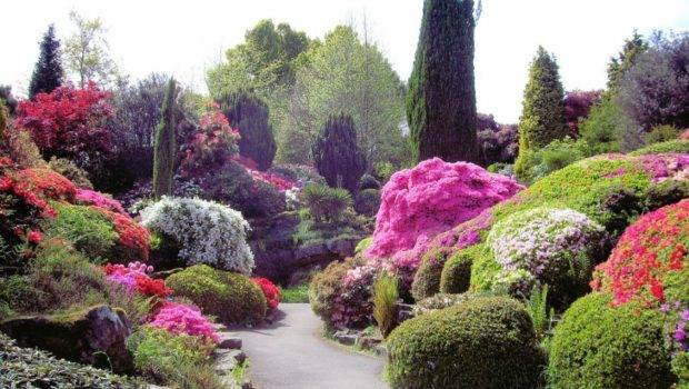 Japanese Garden Design Plans Small Land Colorful Moss Beautiful