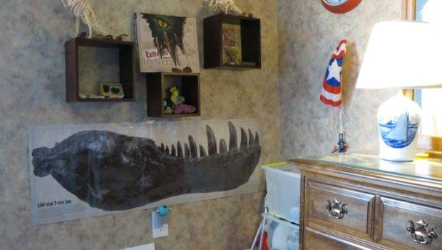 Kiddos Pinterest Dinosaur Bedroom Ideas Dinosaurs