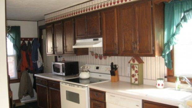 Kitchen Cabinets Painting Ideas Cabinet Color