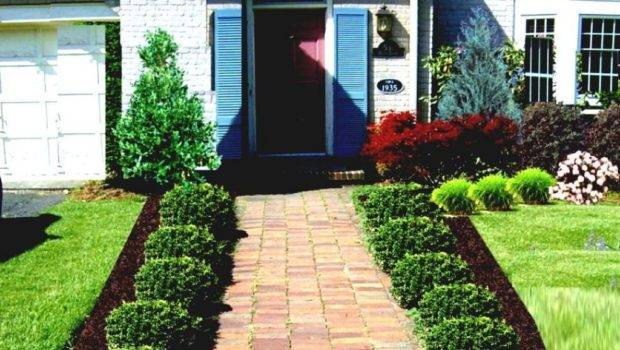 Landscaping Ideas Small City Yards Decor References