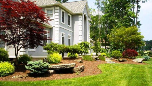 Landscaping Ideas Small Yards Top