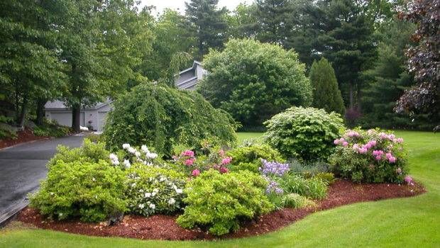 Landscaping Trees Post Design Ideas