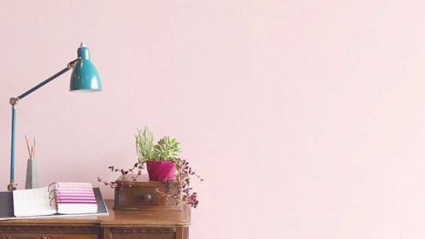 Light Pink Walls Home Design