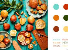 Like Pro Top Tips Tools Choosing Your Brand Color Scheme