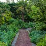 Linda Cochran Garden Down Path