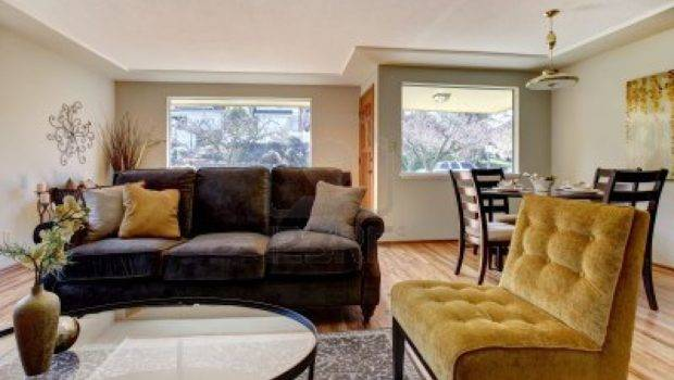 Living Room Colors Match Brown Furniture Decosee