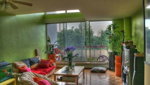 Living Room Designs Plants Home Design