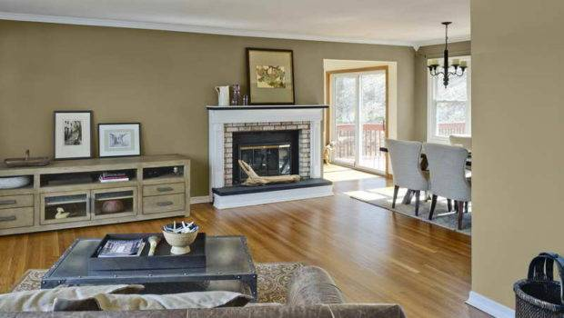 Living Room Ideas Choose Newest Paint Colors Rooms