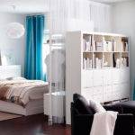 Living Space Divided Into Bedroom Room Bookcase