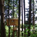 Living Tree Houses Special Places Pinterest