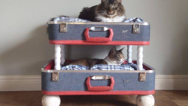 Lovable Luggage Pet Bunk Bed Upcycled Wildandravenhome Etsy