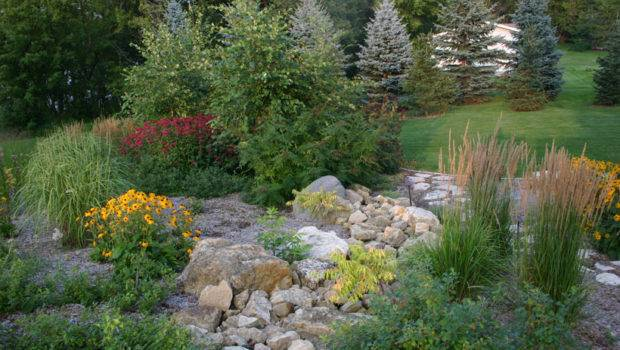 Low Water Garden Design dry pond with succulents and leucadendron water gardengarden design pondsdelicioussydney Low Water Garden Design Landscaping With Rocks More Low Water Low Water Garden Design Photograph Share