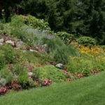 Lush Hillside Garden Distant Landscape Authority