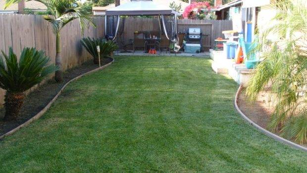 Make Backyard Landscaping Budget Front