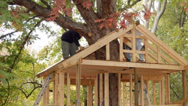 Make Tree Trunk Play Fairly Simple House Wrapped