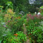Making Creative Garden Path Ideas Edging