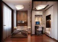 Masculin Brown Theme Decorating Ideas Studio Apartments