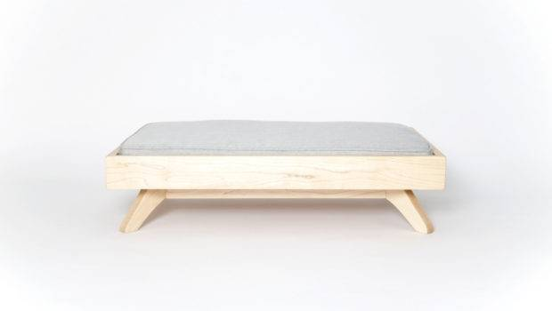 Modern Dog Beds Pup Kit Boxy Blogs