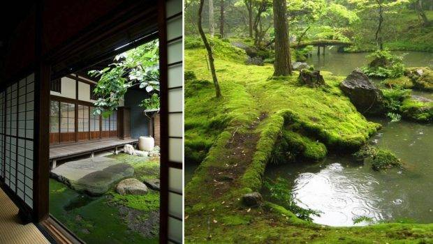 Moss Can Also Spread Out Throughout Garden Space Whether
