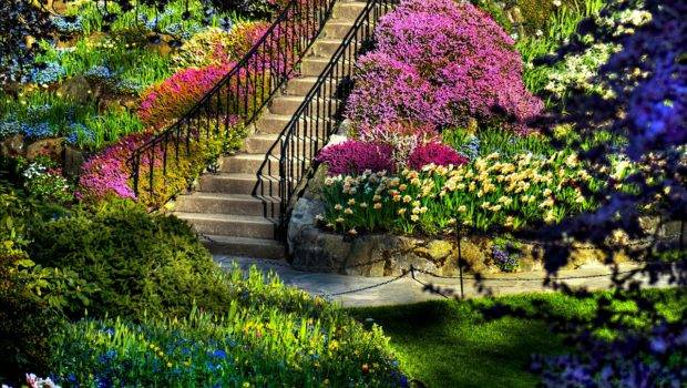 Most Amazing House Incredible Gardens