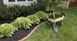 Mulch Portfolio Affordable Landscaping Tree Service Llc