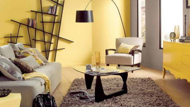 Neutral Colored Living Rooms Modern Room Color Schemes