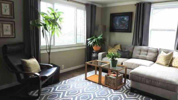Neutral Living Room Rugs Color Schemes