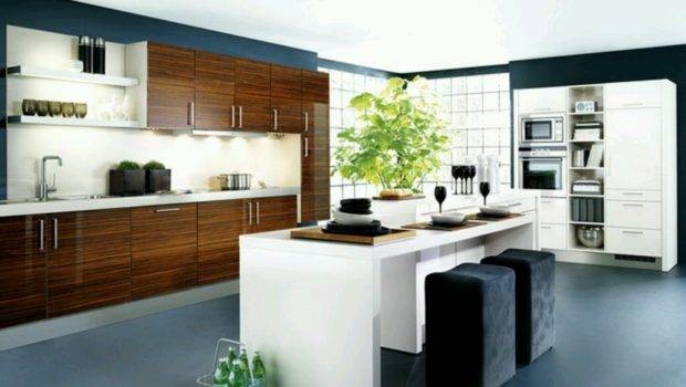 New Home Designs Latest Kitchen Cabinets Modern Homes