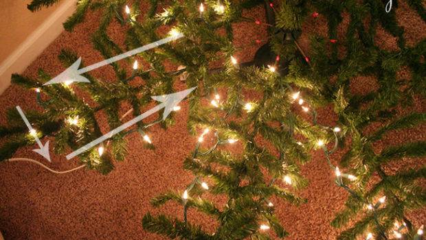 Now Without Further Ado Put Lights Christmas Tree