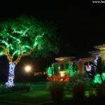 Outdoor Christmas Lawn Decoration Ideas Backyard Party