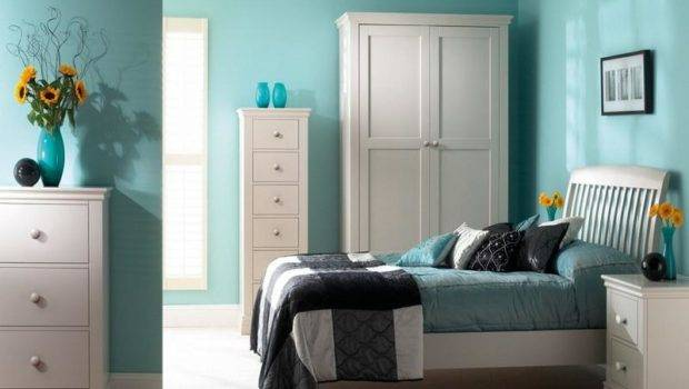 Paint Colors Bedrooms Best Color Bedroom