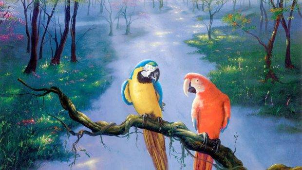 Parrot Beautiful Art Painting