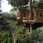 Pete Nelson Tree Houses Let Homeowners Live High Life