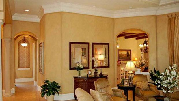 Photos Elegant Living Room Paint Colors