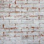 Pics Photos Pink Painted Brick Wall Texture High