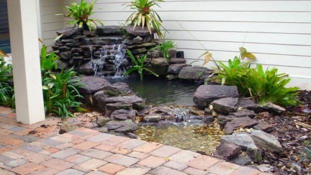 Pond Renovation Service Backyard Getaway