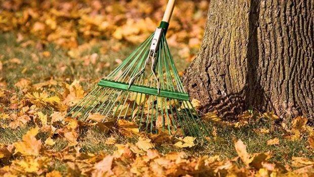 Prepare Your Lawn Garden Winter Using These Tips Fall
