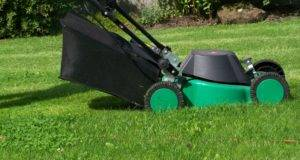 Preparing Your Lawn Winter