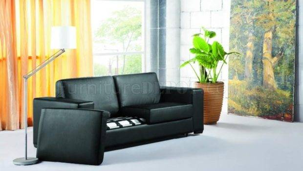 Pullout Sofa Bed Mattress Beds