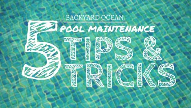 Quick Fixes Common Swimming Pool Problems Backyard Ocean