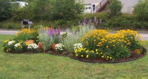 Residential Landscape Design Simple Nature
