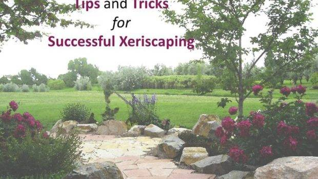 Resource Tips Tricks Successful Xeriscaping