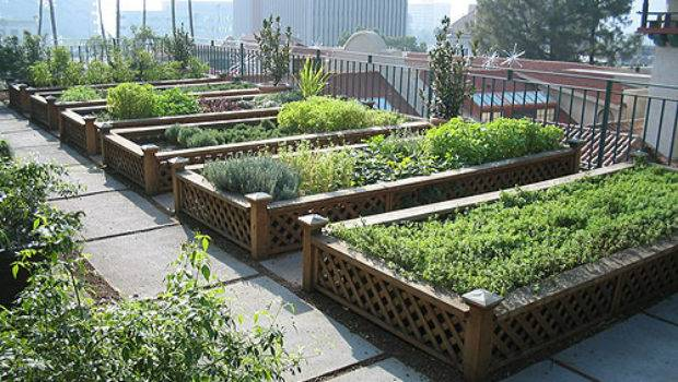 Rooftop Gardens Australia Rise Examples