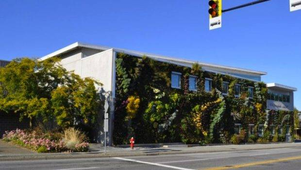 Semiahmoo Library Larger Than Life Living Wall Features Over