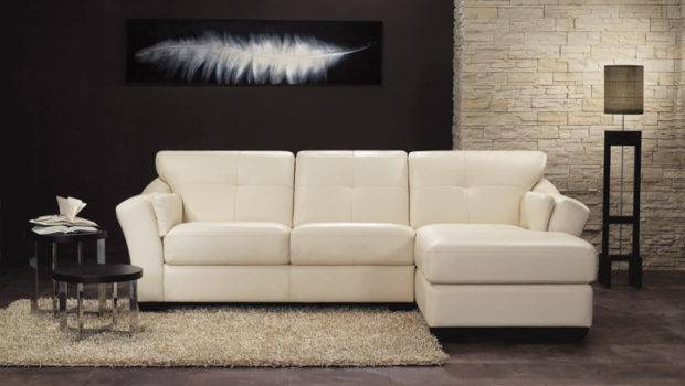 Shaped Sofas Sofa Photos