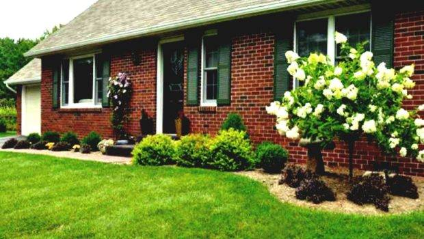 Simple Front Yard Landscaping Ideas Small Fences