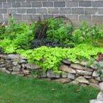 Simple Landscaping Ideas Budget Gardening
