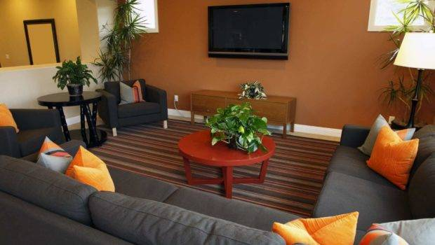 Small Living Room Design Ideas Budget House Remodeling